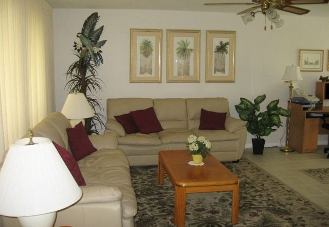 House in Cape Coral - Palm Tree